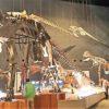 ライオンのフレーメン反応がヤバい。恐竜博物館「神奈川県立 生命の星・地球博物館」に子どもたちと行ってきました!